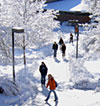 Students on snowy campus