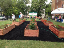 Finished PGA Garden Beds