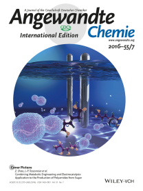 Cover image of Angewandte Chemie International Edition