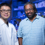 Chi-Fu Yen and Sanjeevi Sivasankar in their Iowa State lab.