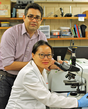 Reza Montazami and Yuanfen in their Iowa State lab.
