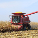 A combine harvests crops in an Iowa field