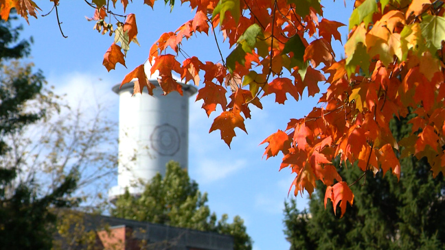 Postcard from Campus: Fall Beauty