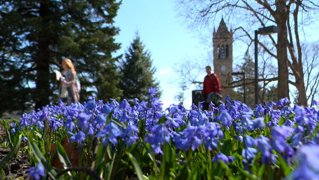 Postcard from Campus: Spring is in the Air