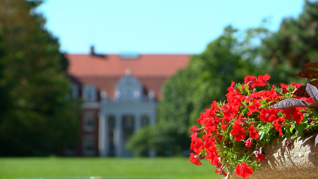 Postcard from Campus: Quiet Summer