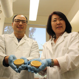 Tong Wang and Tao Fei wear lab coats in a laboratory at Iowa State University