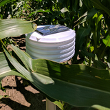 A device collects weather data from a corn field.