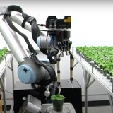 A robotic rover traveling through a laboratory full of potted plants