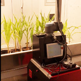The Enviratron robotic rover inside plant growth facility