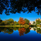 Lake LaVerne on a fall day