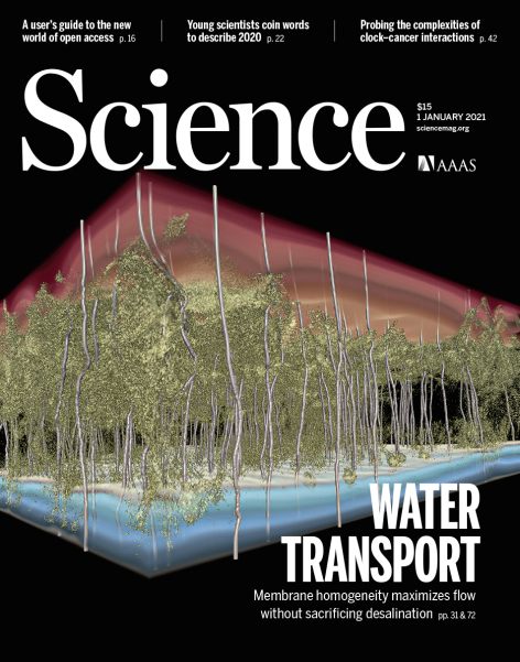 The cover of the Jan. 1, 2021, issue of Science, including a 3D computer simulation of a desalination membrane.